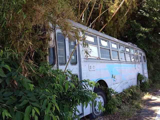 バス廃車体3.jpg