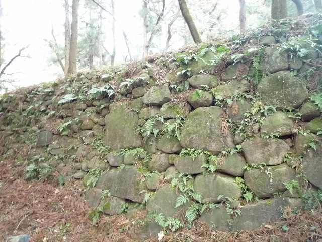 三の丸石垣2.jpg