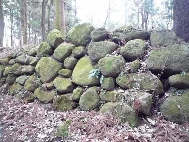 三の丸石垣4.jpg