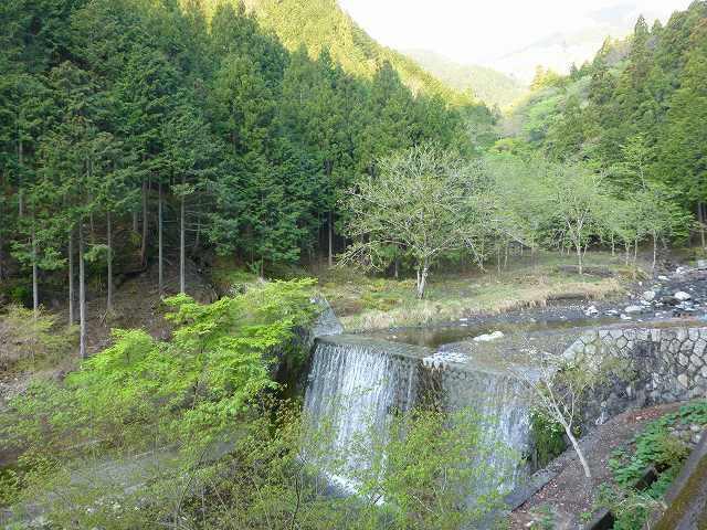 上流の堰堤.jpg