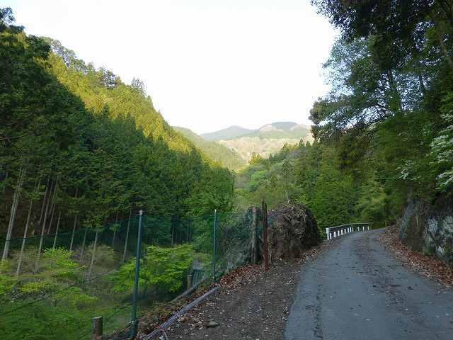 上流への道2.jpg