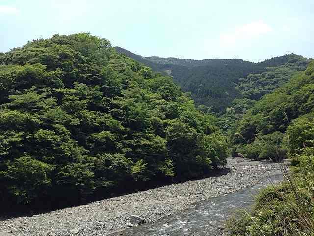 世附川3.jpg