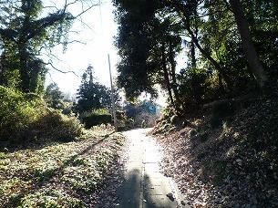 別の道3.jpg