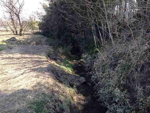 北側の堀2.jpg