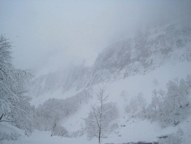 吹雪の山道.jpg