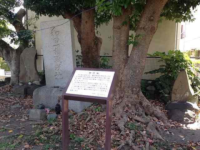和田塚3.jpg