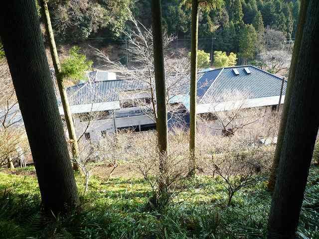 坂から見下ろす船山館.jpg