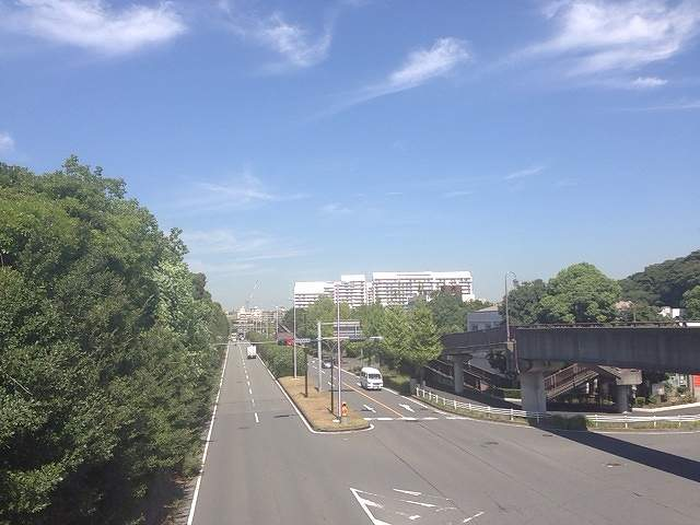 夏の大将道2.jpg