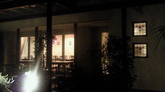 夜のさらの木3.jpg