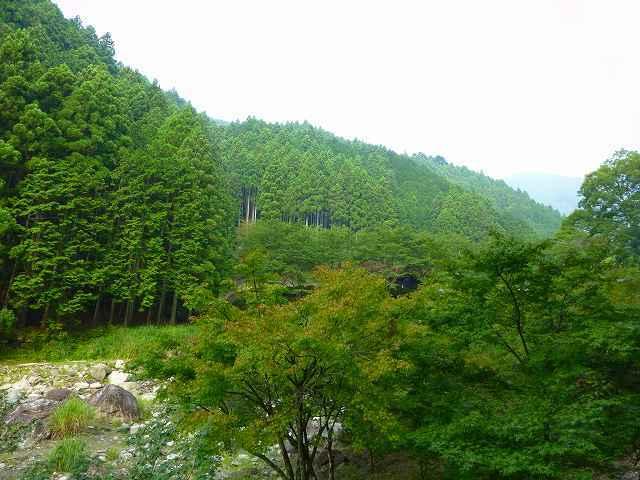大森山.jpg