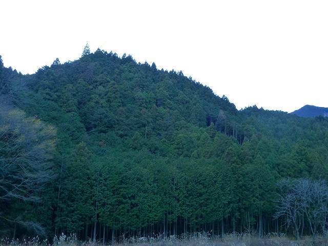 大森山2.jpg