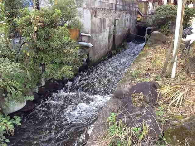 小川1.jpg