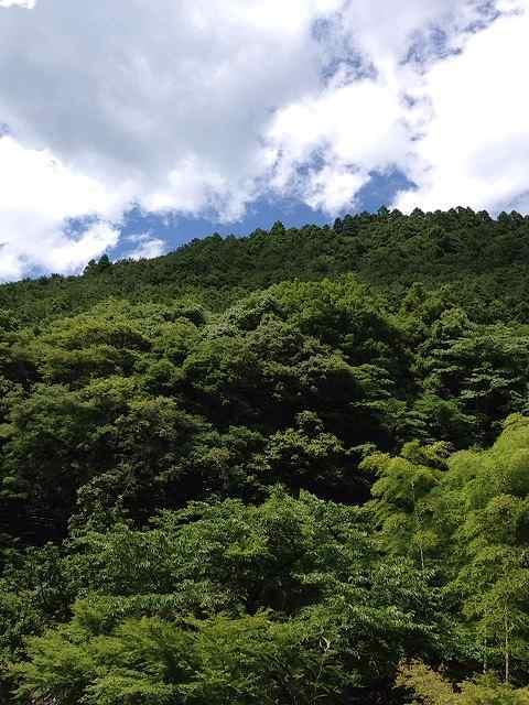 山々と夏空1.jpg