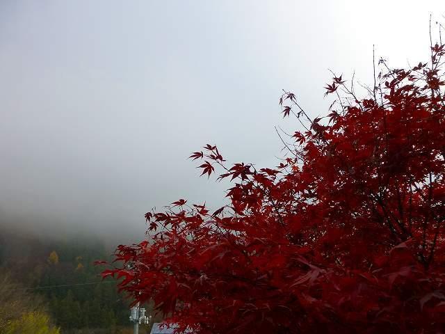 山霧3.jpg