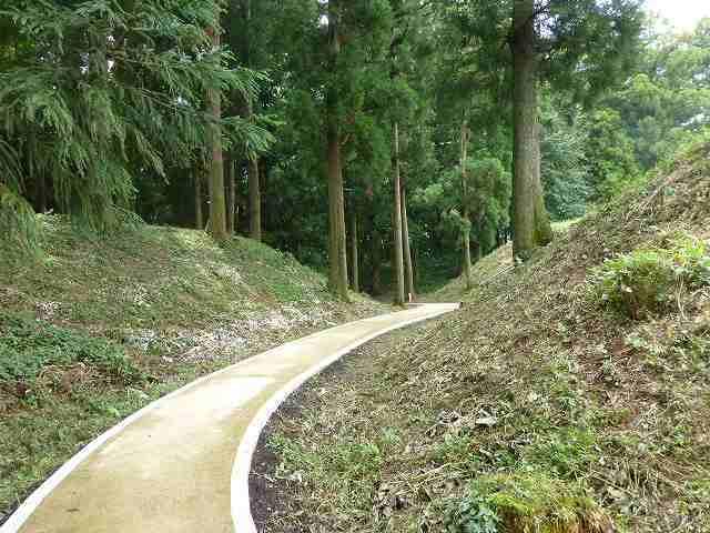 掘の遊歩道2.jpg