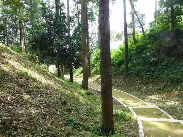 掘の遊歩道4.jpg