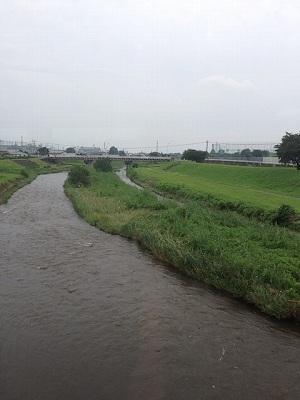 桃ノ木川鉄橋3.jpg