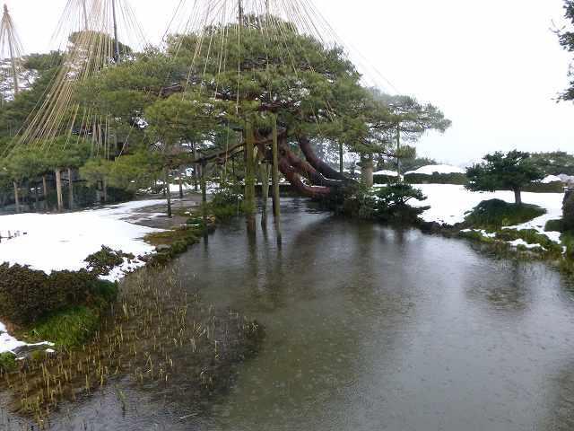 池なのか川なのか2.jpg