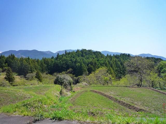 波木井山1.jpg