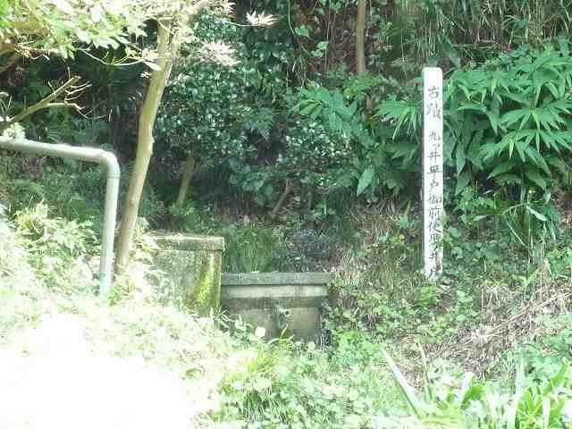 現在の九つ井です-2.jpg