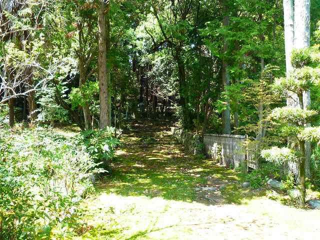 穴山信友の墓はこの茂みの奥にある.jpg