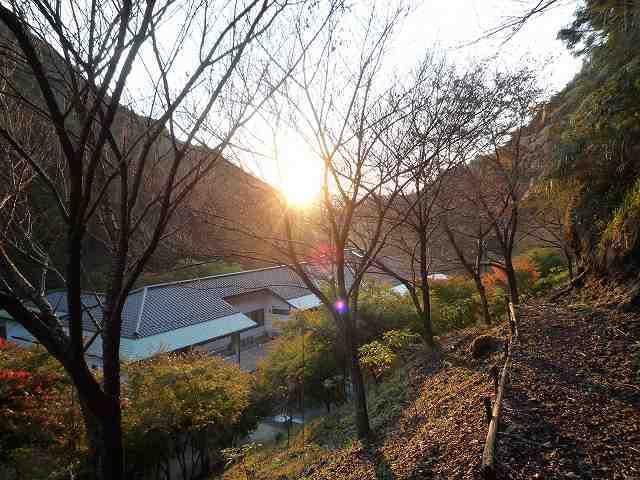 裏の敷地に朝日が・・・2.jpg