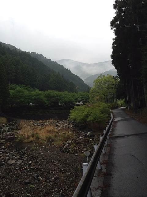鉈取林道.jpg
