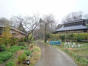 雨の村々2.jpg