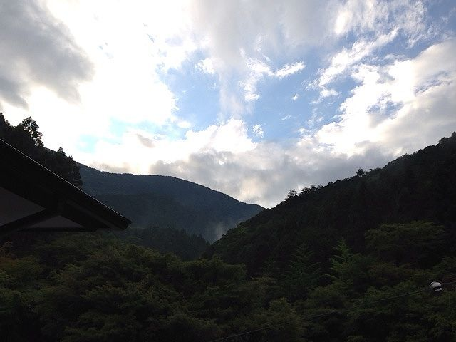 雨上がりの御殿山.jpg