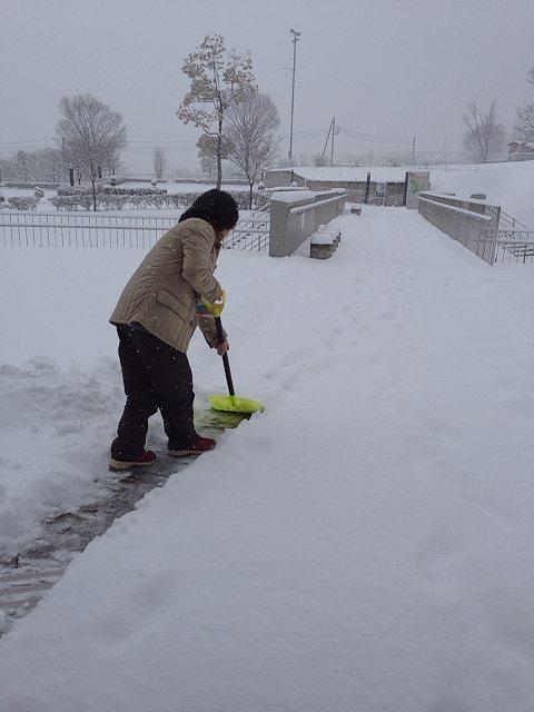 雪かきを始めた.jpg