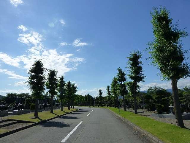 霊園と青空.jpg