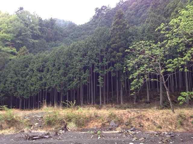 風景2.jpg