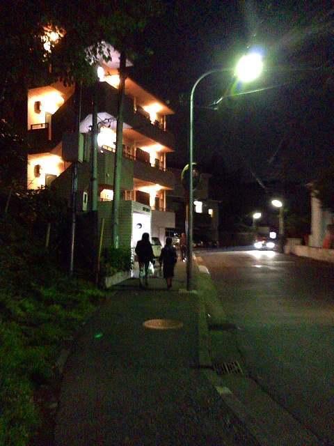 駅から歩く道.jpg