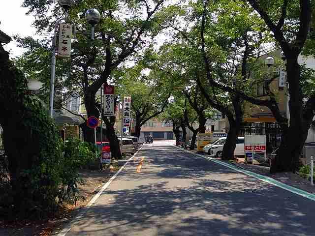 駅前通り.jpg
