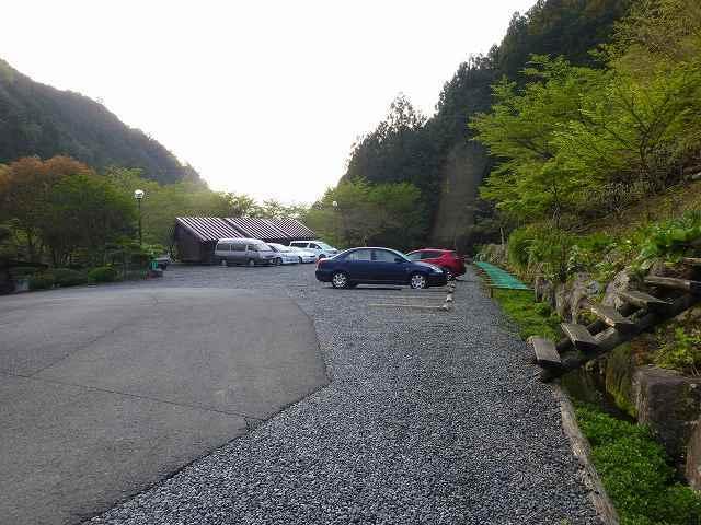 駐車場とクレソン.jpg