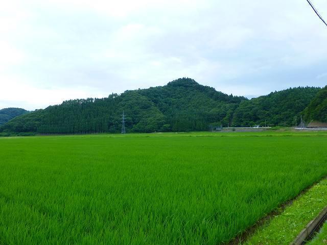 鵜ノ浦城1.jpg